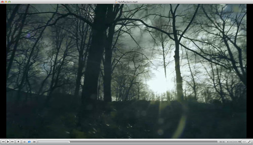 """Filmstill aus """"farbflackern"""" (Präsentation Experimenteller Kurzfilm"""