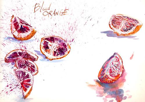 Sketchbook #94: Blood Oranges!