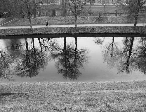 Black-and-white photo of the reflections of the trees on the water in the moat.