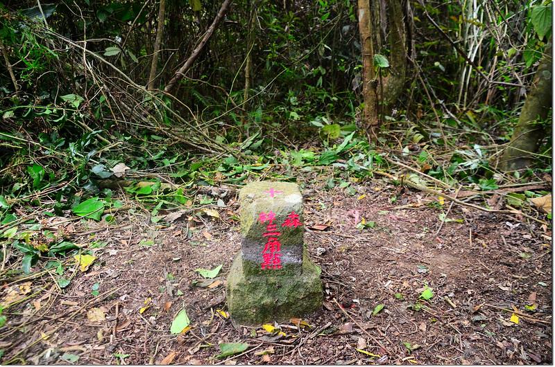 嘉武山山字森林三角點(Elev. 332 m) 1
