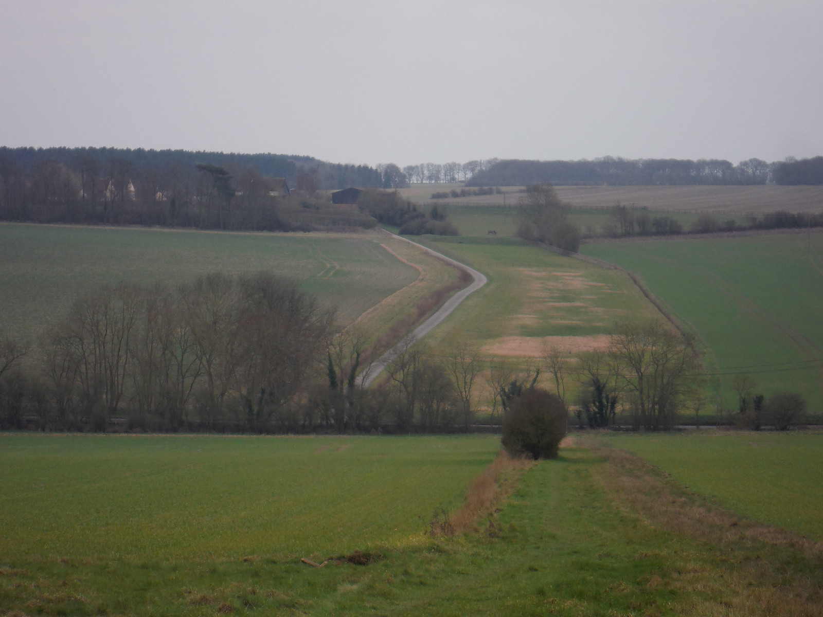 Essex' highest point from Chrishall Church SWC Walk 116 Wendens Ambo [Audley End station] Circular