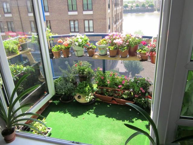Convierte tu terraza en un hermoso jardín, con estos 7 sencillos ...