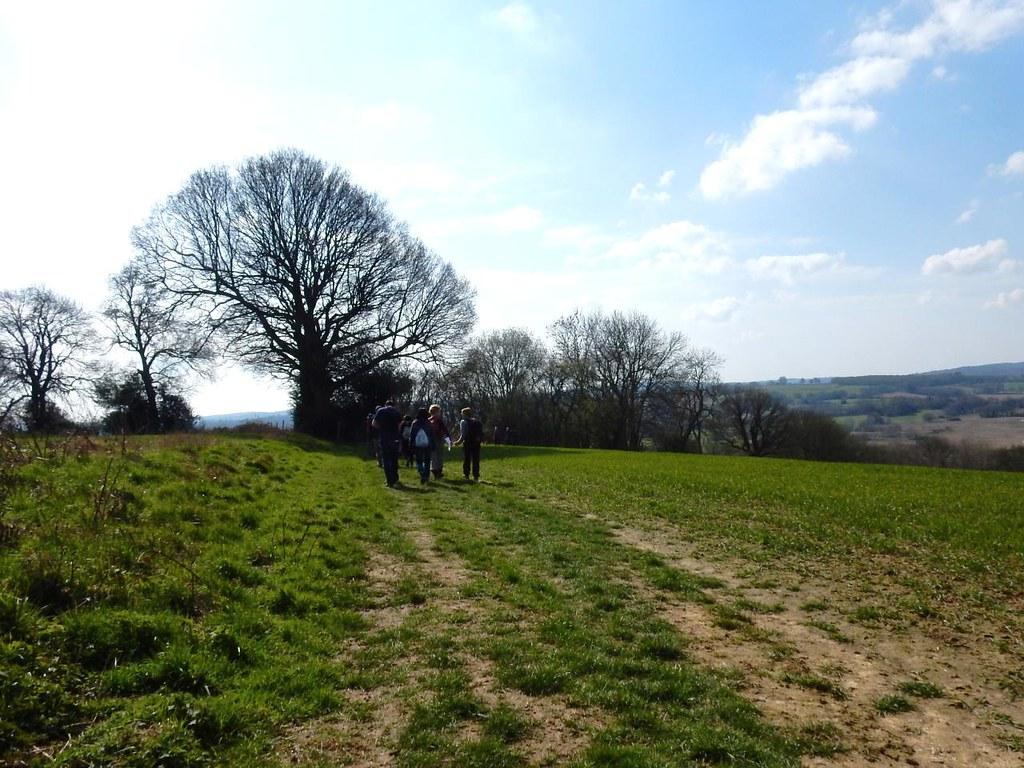 Along the ridge Ashurst to Eridge