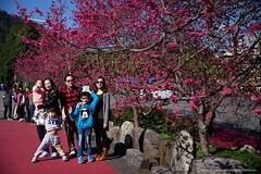 20160229_九族文化村
