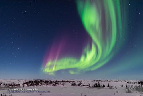 Superb Aurora of March 14, 2016 #1