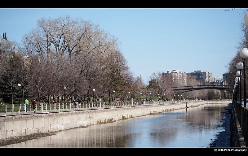 Canal during springtime