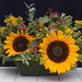 Sunflowers — Photo Courtesy The Rittners School of Floral Design, Boston