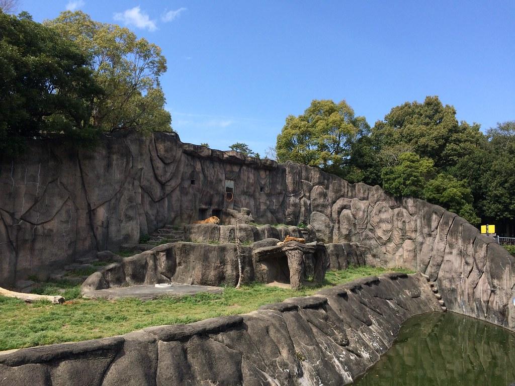 hamamatsu zoo