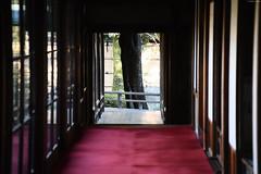 柴又帝釈天 ∣ Shibamata Taishakuten temple・Tokyo