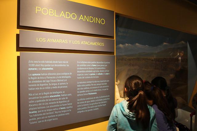 museu-historia-natural-santiago3