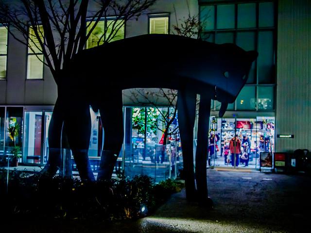 160128_TsutayaShoten-3
