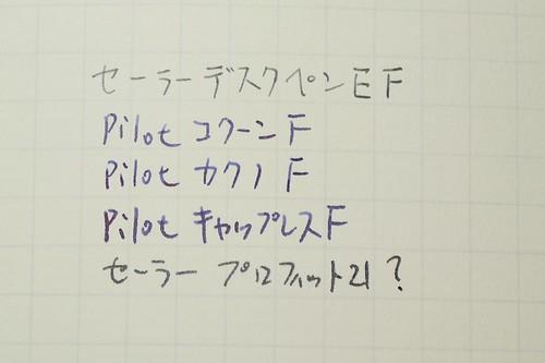 P1070608.JPG