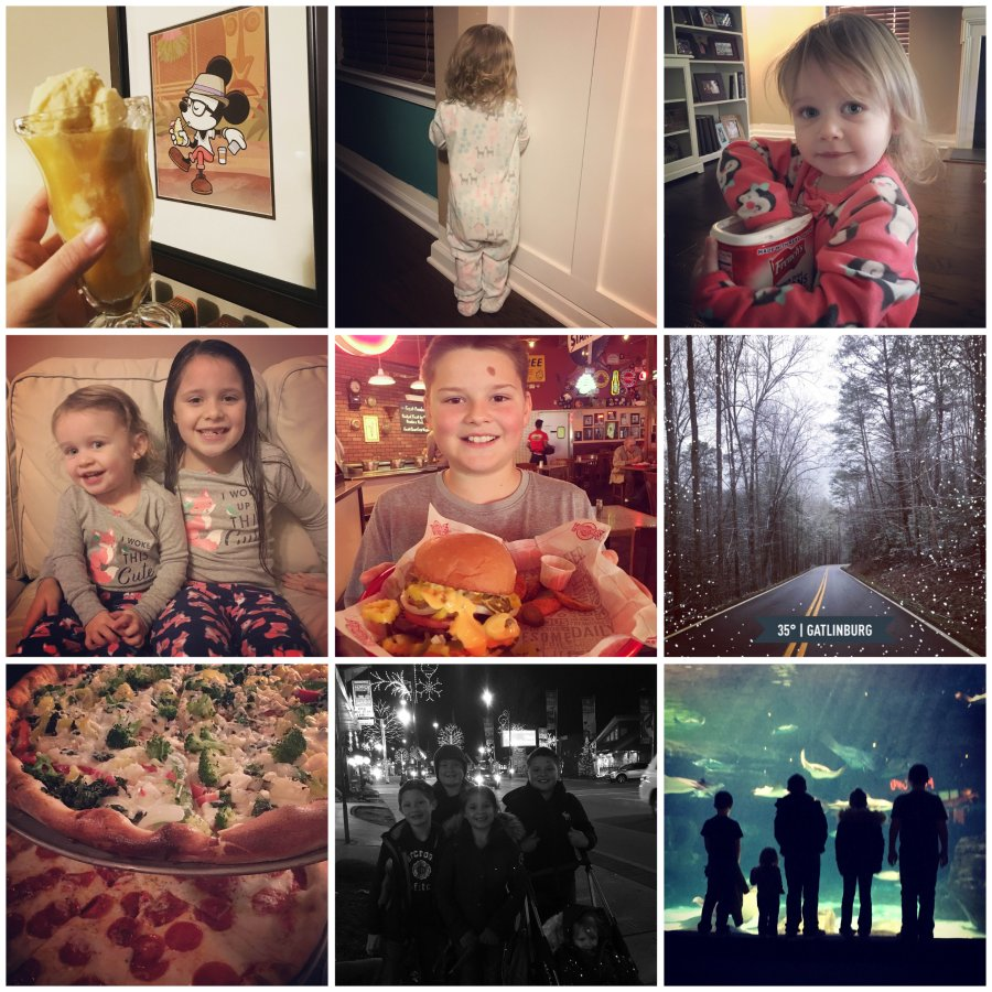 january insta love one