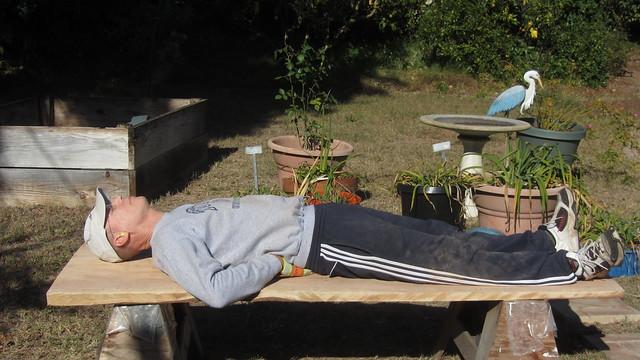 IMG_8578 tt redwood bench