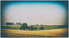 Paysages autour d'Arras / Landscapes around Arras