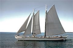 Maritime, marine
