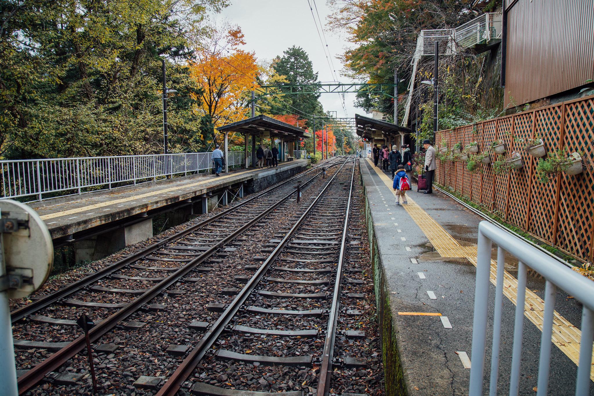 2014-11-28 御殿場キャンプとみかん狩り 012