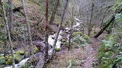 Starvation Creek, Columbia Gorge, Oregon