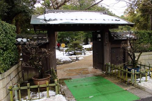 慶雲館の盆梅展(2016.1.28)