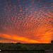 Amazing Mackeral Sky Sunset Over Juno Beach by Captain Kimo