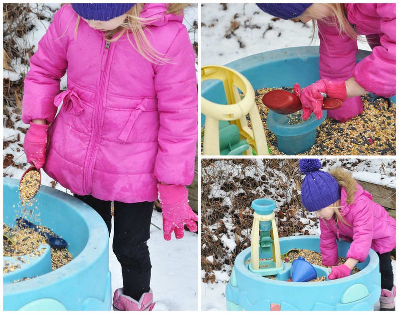 Seeds & Scoops Sensory Table Play