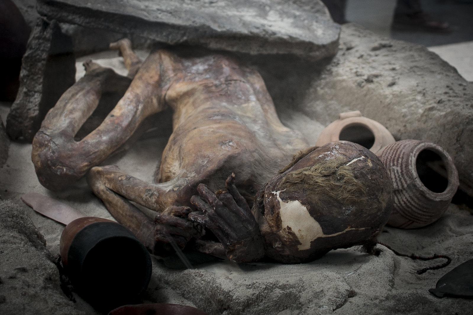 the gebelein man, mummies in british museum, mummy, egyptian mummy, british museum, natural mummy