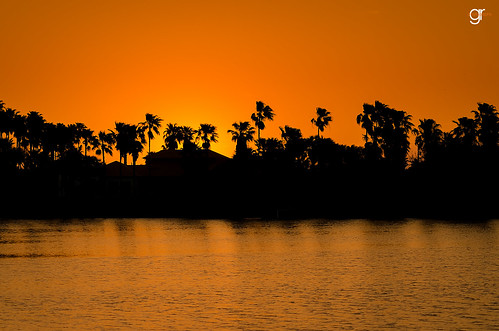 trees sunset sky water silhouette palms landscape outdoors texas outdoor dusk adventure countryroad goldenhour clearsky rgv ranchlife texaspride rideordie texasnature texasbackroads texasphotography resacas visittexas igtexas ilovetexasphoto rgvigers txbkrds