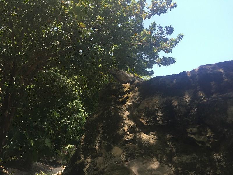 Zona Arqueológica San Miguelito