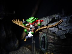 Vulture Rider