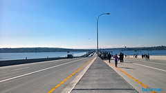 New 520 Bridge Grand Opening | Bellevue.com