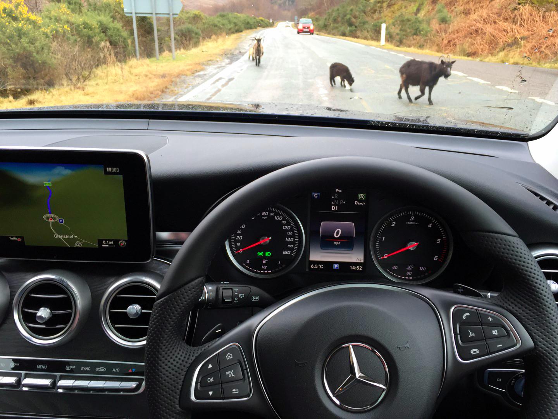 Ruta por Escocia en 4 días escocia en 4 días - 26370006450 d4b7e23c2a o - Visitar Escocia en 4 días