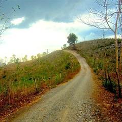 Life Way | Jalan Kehidupan | Naekake A, Timor Tengah Utara, Nusa Tenggara Timur #life #way #village #offroad #road #villageroad #cloudy #curve #curveway