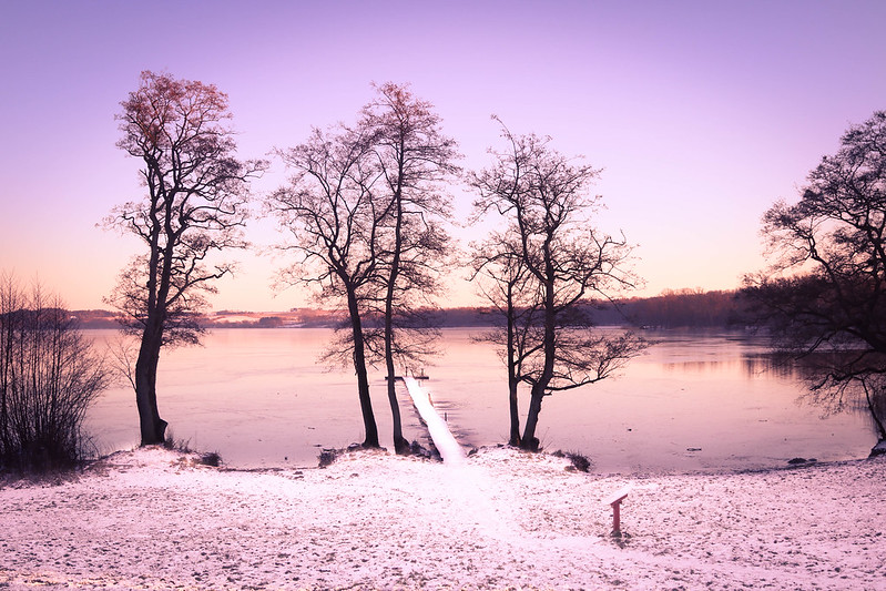 Winter in Denmark