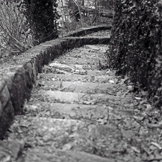 Livzey Stair2