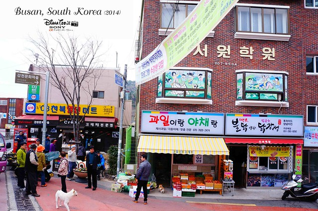 South Korea 2014 - Day 02 Busan Gamcheon Culture Village 02