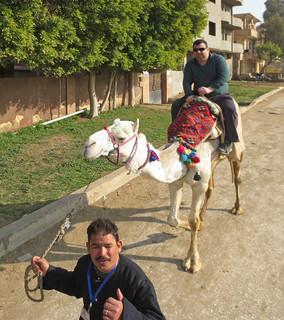 CamelRide1-04