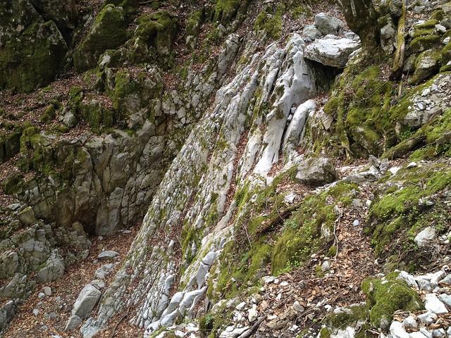 御池岳 コグルミ谷 岩