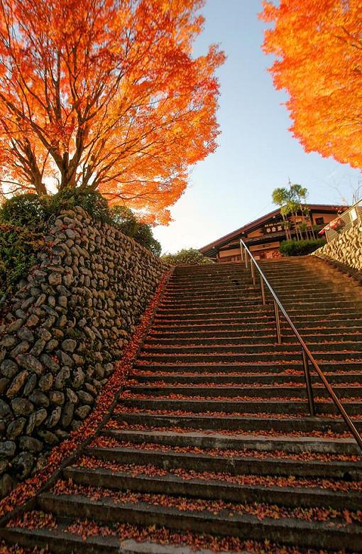 日本嵐山高雄保津川03