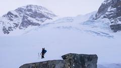 Podejście odowcem Vadret Pers na Piz Palu 3900m - Albert.