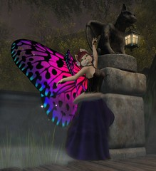 Blackmoor Creators - Arcadia, Poseidon, Senzafine and Enchantment