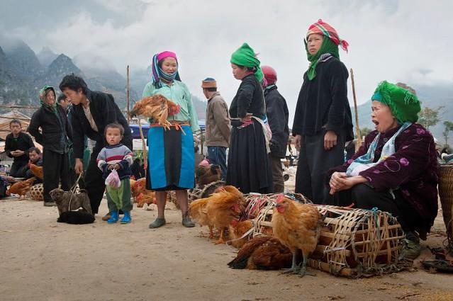 Vietnamese market - chicken