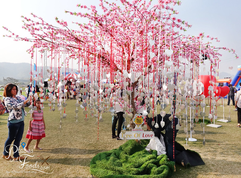 singha park international hot air balloon tree of love