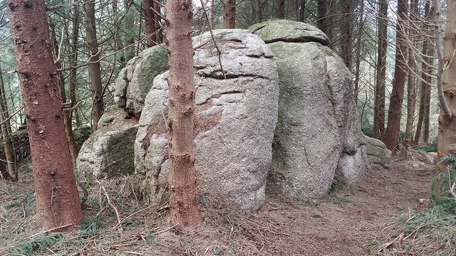 Outcrop near Rough Tor (Burrator)