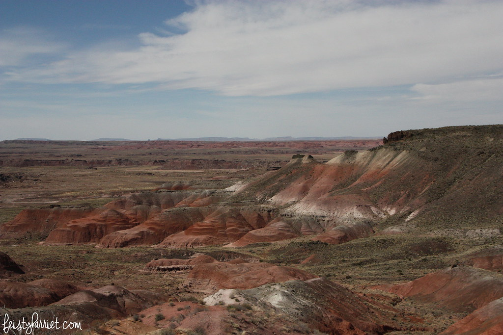 Petrified Forest NP 3_feistyharriet_March 2016