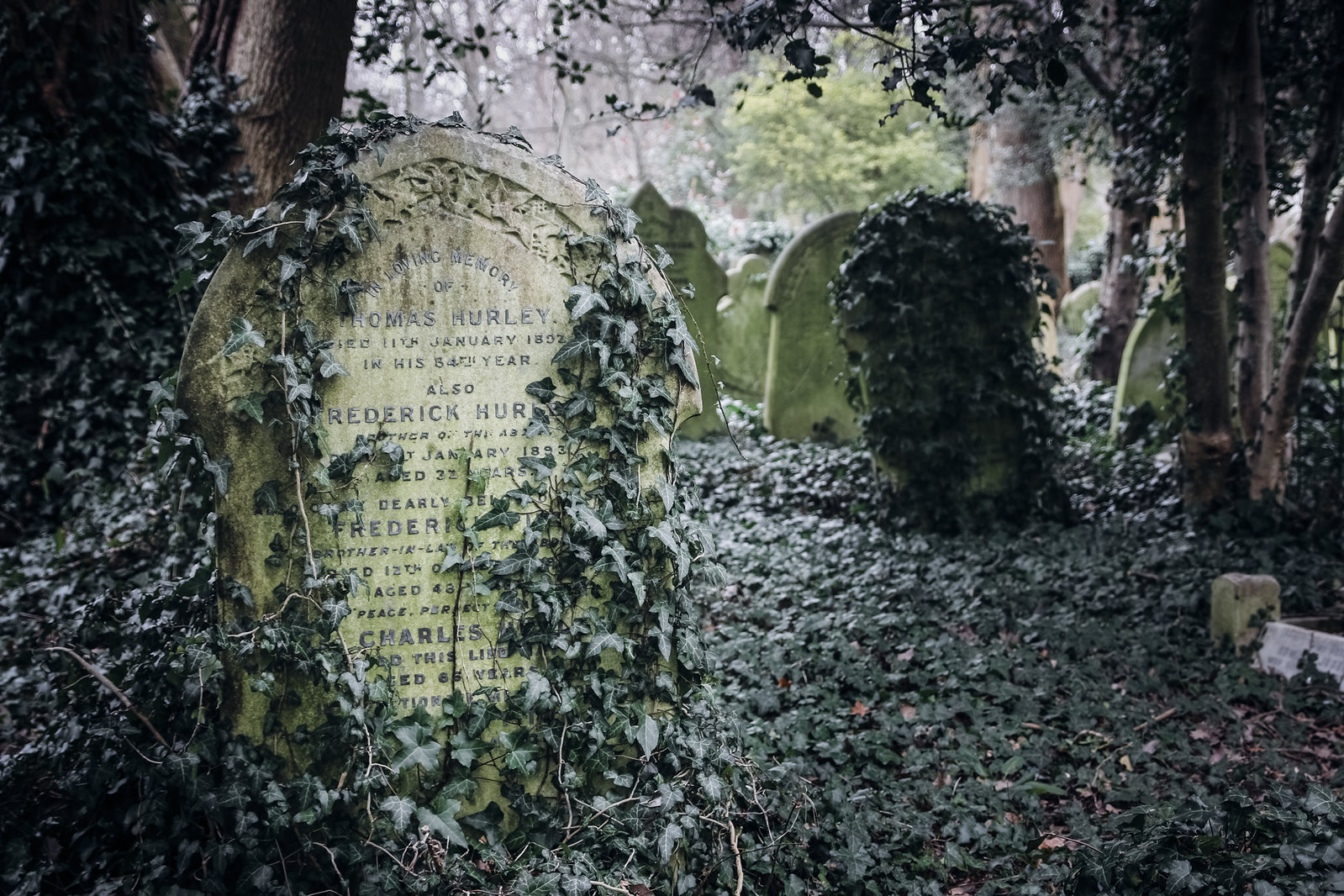 highgate cemetery, old cemetery, highgate, london cemeteries