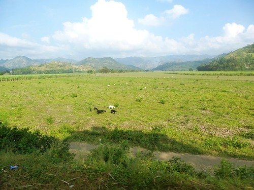 P16-Negros-San Carlos-Dumaguete-Route (10)