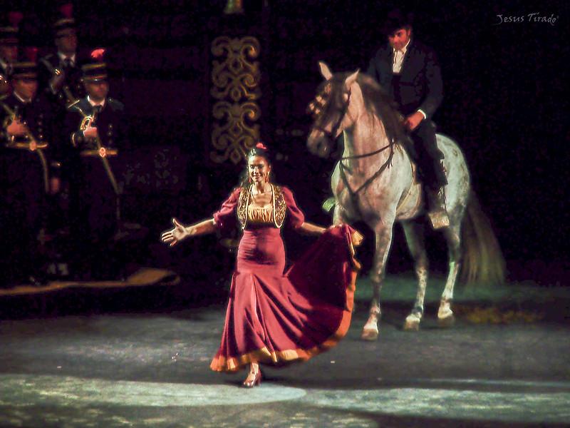 Espectáculo Flamenco 23749459503_fd556c21d1_c