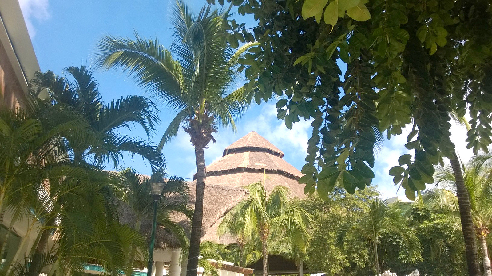 Cozumel, Mexico (12)