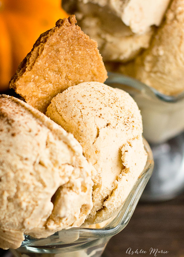 served with shards of baked pie crust dough and sprinkled with cinnamon this ice cream tastes like a creamy pumpkin pie