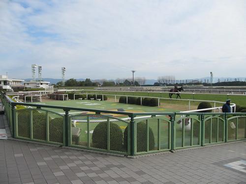京都競馬場のウィナーズサークル